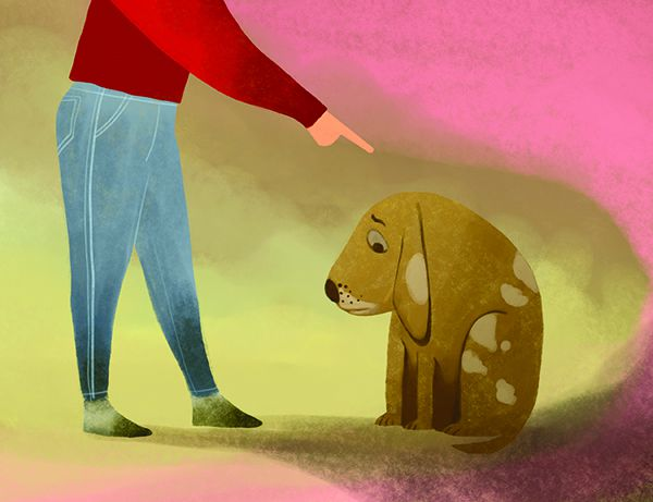 Punishment vs. Interruption: Properly Managing Your Dog's Behaviour